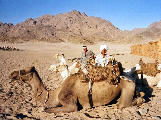 Попити чаю з бедуїнами у пустелі