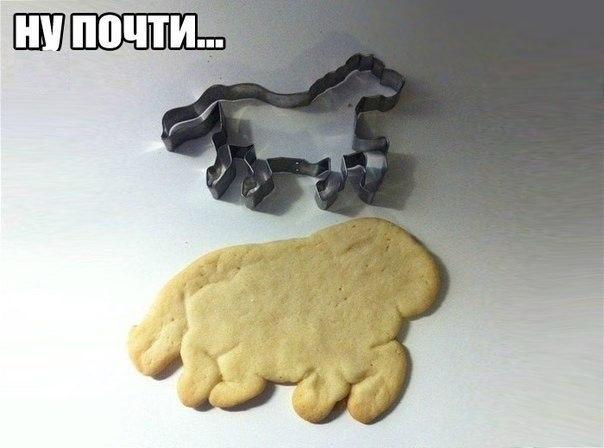 Лошадка переела мучного