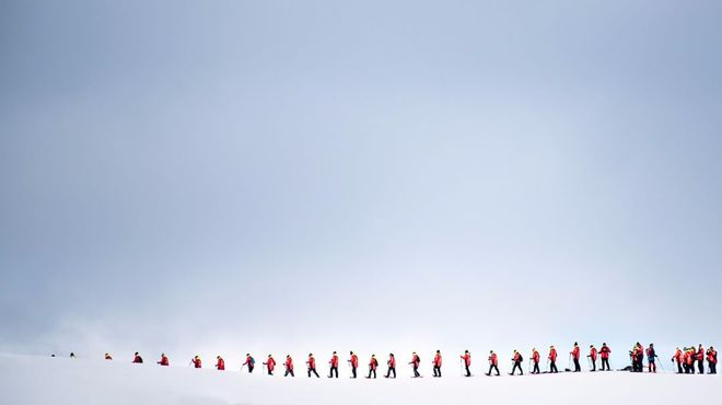 10 найцікавіших фактів про Антарктиду
