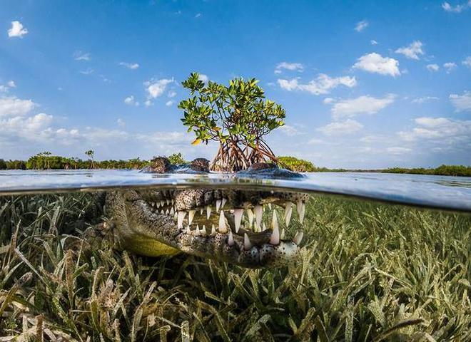 Кращі туристичні фотографії конкурсу Siena International Photography Awards