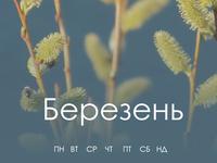 Весенняя пчёлка смартфон: март 2021