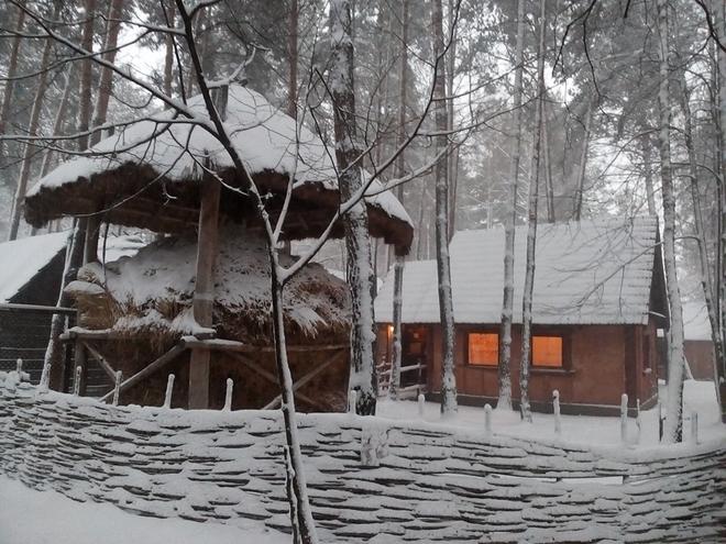 Українське село. Етнокомплекс взимку