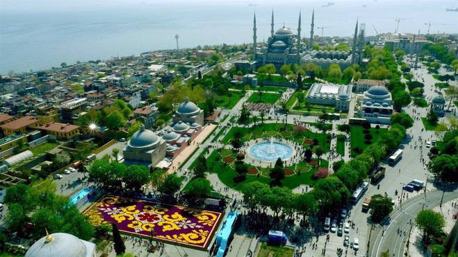 У Стамбулі висадили найбільший в світі килим з тюльпанів