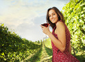 «Асканія» - лінія органічних вин з нового європейського терруара
