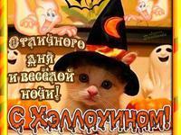 Отличной ночи на Хэллоуин