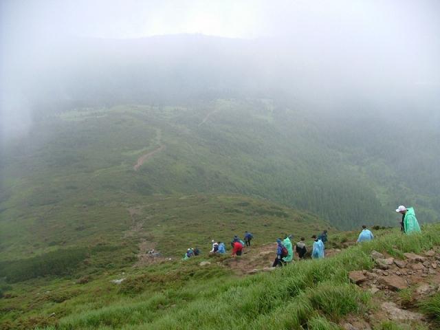 Лучше гор могут быть только горы! 02_hoverla_zaroslyak.com_