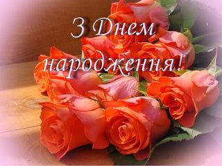 Красивые розы на день рождения