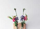 Флористичні трофеї