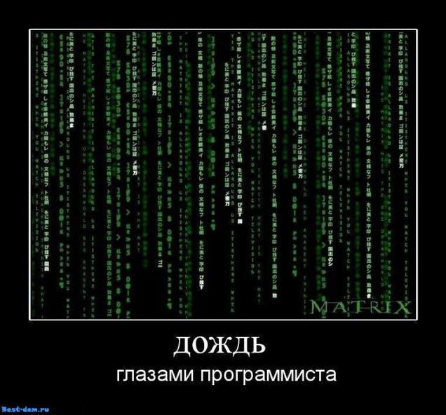 224024_a48.jpeg