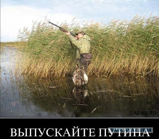 Путин и журавли