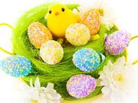 Цыпленок и пасхальные яйца