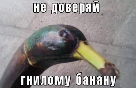 Это всего лишь гнилой банан