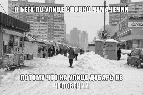 Вот и зима до нас дошла!