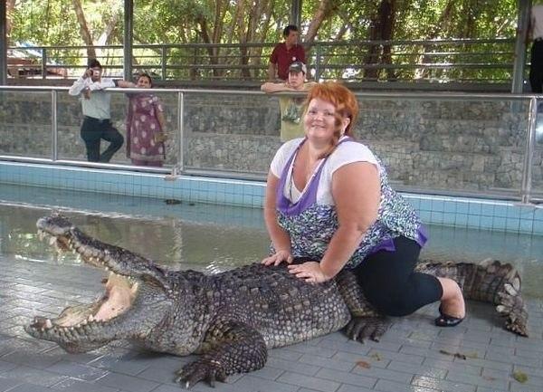 Последний крик души крокодила