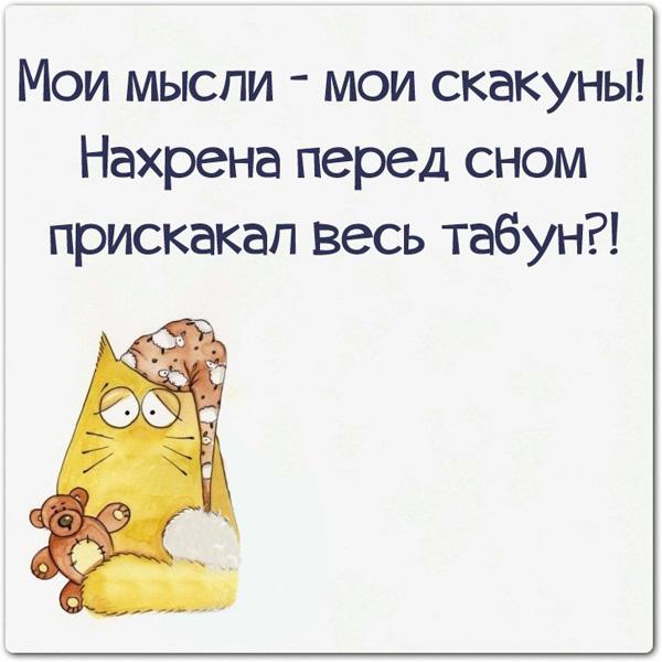 смешные картинки с текстом