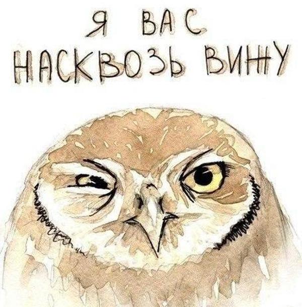 Картинка сова с надписью