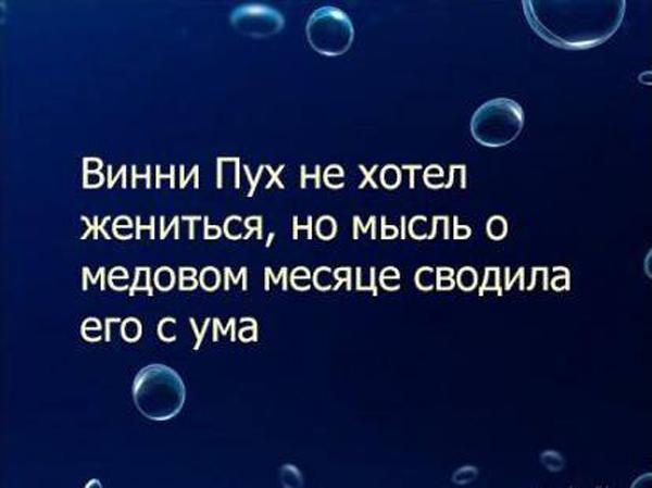 159431_3559bf8d_437348460.jpeg