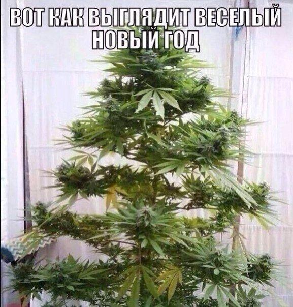 Порошенко звільнив глав трьох райдержадміністрацій на Харківщині та Донеччині - Цензор.НЕТ 4587