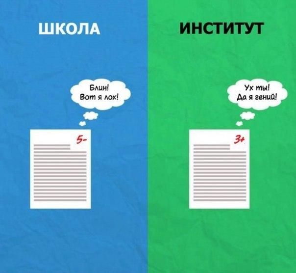 Школа vs институт