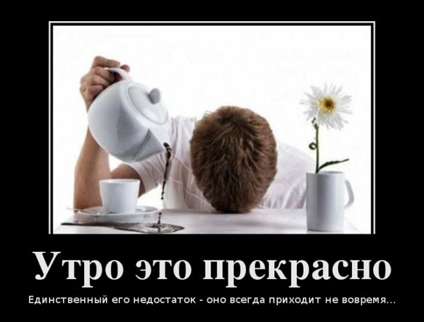 https://s1.tchkcdn.com/i/9/1/206629_b2c6b582_df198321d121b239eca941d395b78614_1.jpg