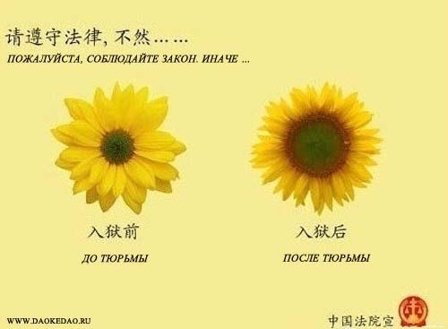 Китайская социальная реклама