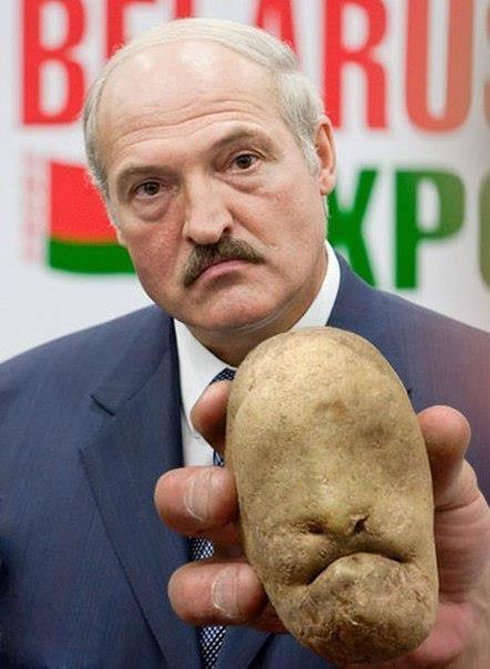 На территории Беларуси есть российские войска, - Генштаб ВСУ - Цензор.НЕТ 4583