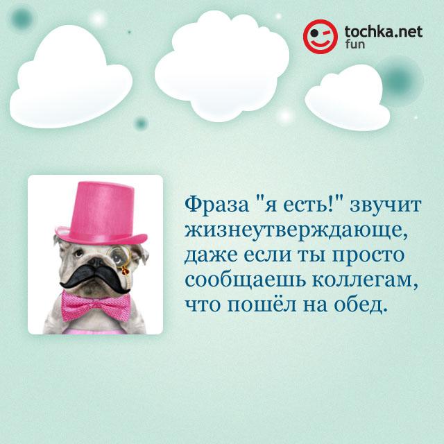 """Собака-философяка про """"я есть!"""""""