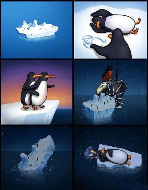 Картинки по запросу анекдот про пингвинов