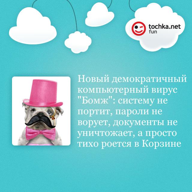 Собака-философяка про новый вирус