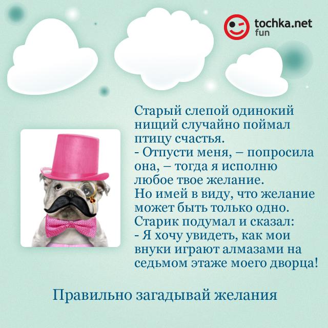 Собака-философяка про желания