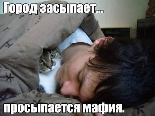 93755_152c7df7_1439814802.jpeg